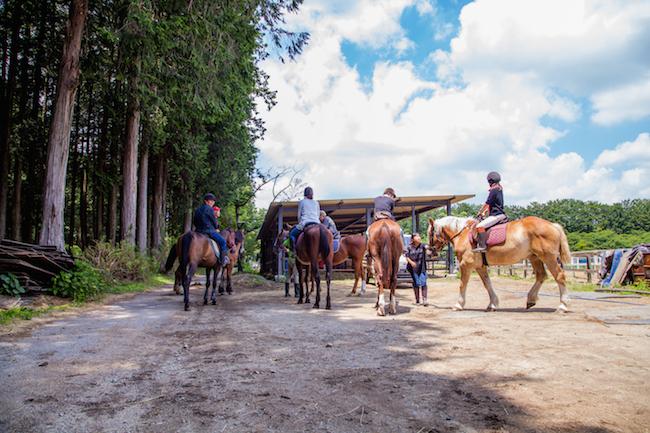 東京から2時間半。乗馬もアーチェリーもできる千本松牧場は夏の穴場スポット