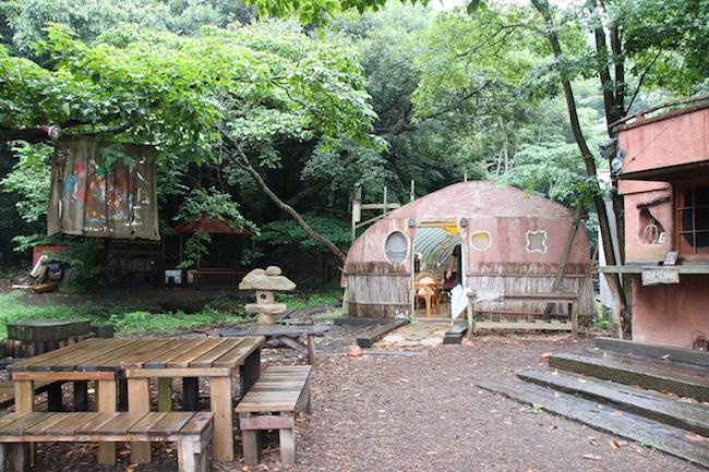 横須賀発・収穫できる八百屋、畑にはアート。その原点は「食の野望」