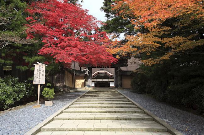 2015年秋しか見られない高野山。開創1200年を祝う御開帳で歴史旅へ