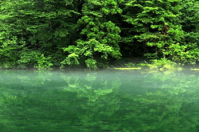 幻想的な美しさ!毎日水が入れ替わる驚異の泉「龍ヶ窪」