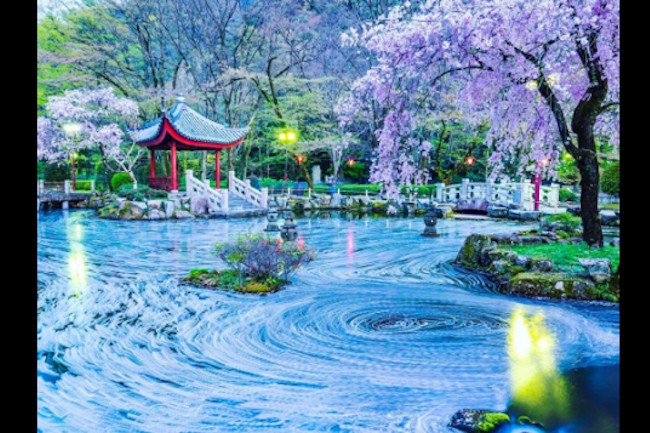 岐阜公園の中に絶景が。日中友好庭園のぐるぐるスポットが話題