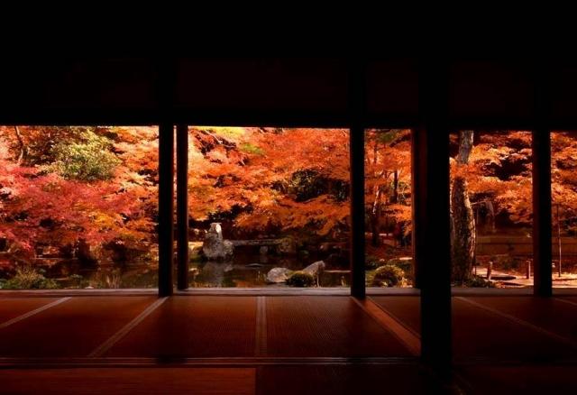 古都が紅に染まるとき。写真家がこっそり訪れる、京都の紅葉名所の穴場