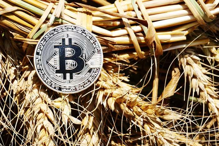 銀と大麦とブロックチェーン。貨幣史から見たビットコインの「本当の凄さ」=房広治
