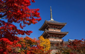 紅葉は旅の入り口にすぎない。「そうだ京都、行こう」歴代ロケ地めぐり