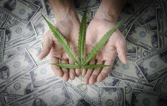 「大麻小学生」報じた朝刊に「大麻の効果」を載せた朝日のタイミング