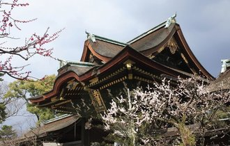 観光客の少ない今が狙い目!梅の名所をめぐる京都「おとなの旅」