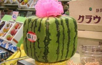 香川県で栽培された「四角いスイカ」、高級品として海外で人気沸騰
