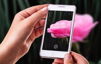 芸術の秋到来。スマホや携帯で「芸術的な写真」を撮る簡単な方法
