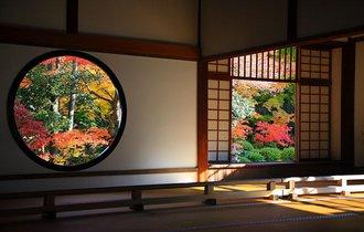 【京都案内】大人は洛北を目指す。古都で紅葉に息を飲む旅