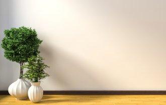 ちょっと意外な効能も。加湿器代わりに観葉植物を置くという選択