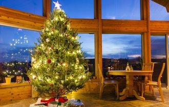 【衝撃的事実】クリスマスはキリストの誕生日ではなかった