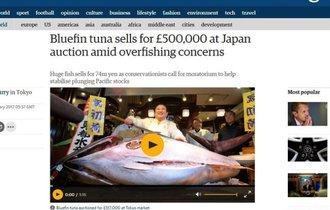 クロマグロの惨状を見ていない? 日本の初競りに海外から批判殺到