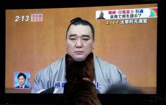 引退会見する日馬富士の顎に猫がピタリとハマる事案が発生