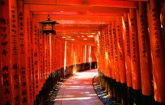 京都・伏見稲荷「千本鳥居」の先にある、知られざる裏パワースポット