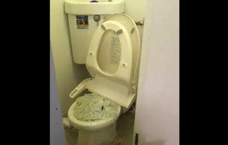 【閲覧注意】猫砂をトイレに流すと一階の住民がこうなります