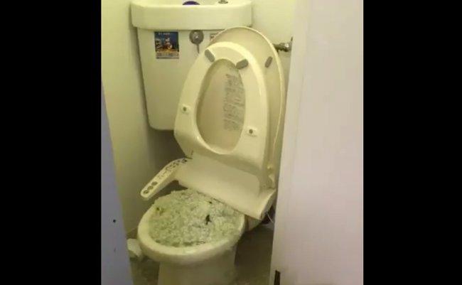 猫砂 トイレ ツイッター